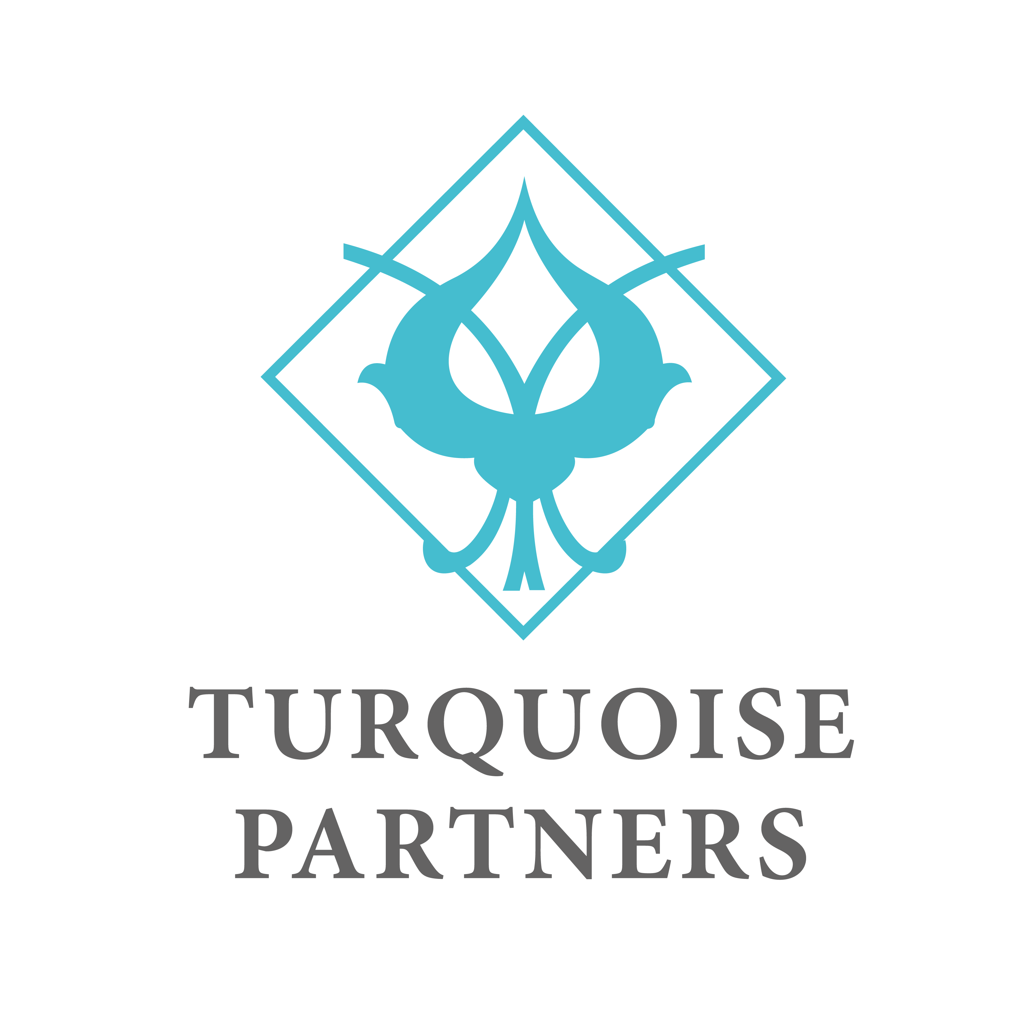 TURQUOISE PARTNERS